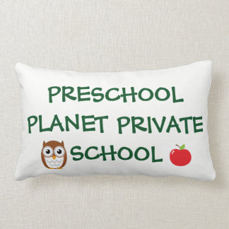 preschool owl pillow