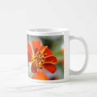 presenting coffee mug