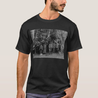 President Roosevelt and John Muir California 1903 T-Shirt