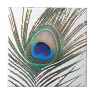 Prestigious Peacock Ceramic Tile