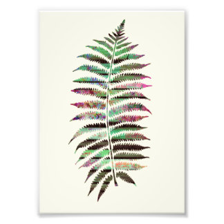 Pretty Abstract Botanical Peacock Leaf Photo Print