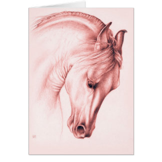 Pretty Andalusian Horse Card