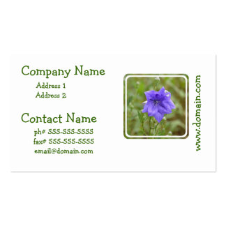 Pretty Balloon Flower Pack Of Standard Business Cards