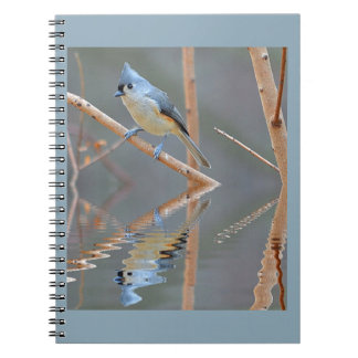 Pretty Bird Reflections Notebooks