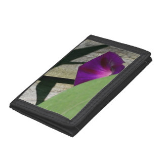 Pretty Black Floral Photo Wallet