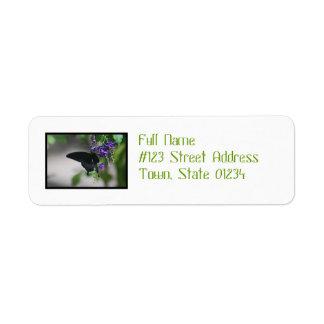 Pretty Black Swallowtail Butterfly Return Address Label