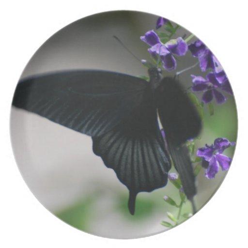 Pretty Black Swallowtail Butterfly Plates