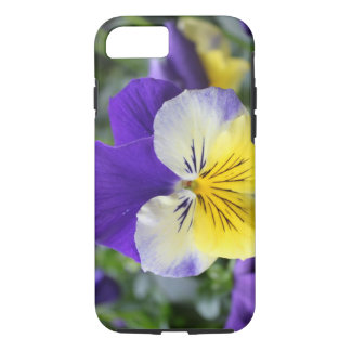 pretty blue and yellow pansy flower iPhone 7 case