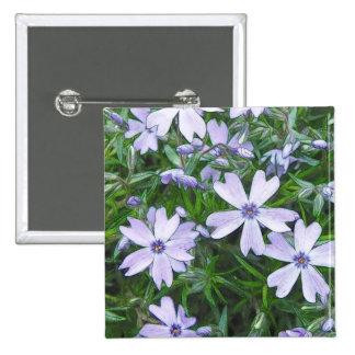 Pretty Blue Creeping Phlox Pins