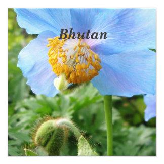 Pretty Blue Poppy 5.25x5.25 Square Paper Invitation Card