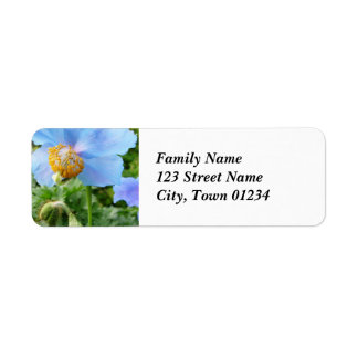 Pretty Blue Poppy Return Address Label