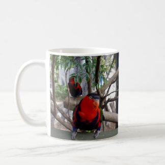 Pretty_Boy_Rainbow_Lorikeet,_Coffee_Mug Coffee Mug