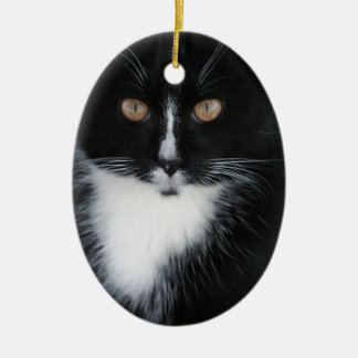 Pretty Boy Tuxedo Kitty Ceramic Ornament
