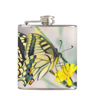 Pretty Butterfly on Yellow Flower Hip Flask