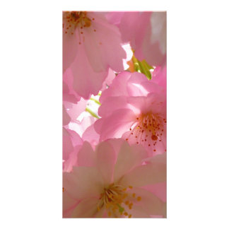 Pretty Cherry Flowers Customised Photo Card