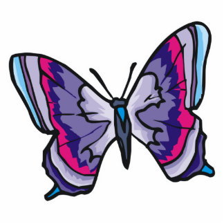 pretty colorful butterfly design standing photo sculpture