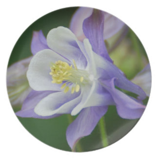 Pretty Columbine Flower Plate