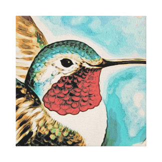 Pretty Costa's Hummingbird Canvas Print