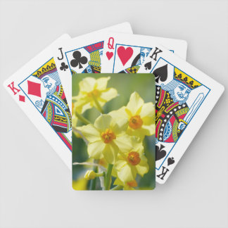 Pretty Daffodils, Narcissus 03.1 Bicycle Playing Cards