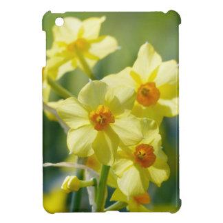 Pretty Daffodils, Narcissus 03.1 iPad Mini Case