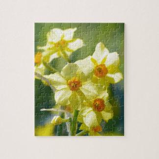Pretty Daffodils, Narcissus 03.1 Jigsaw Puzzle