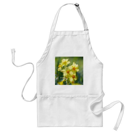 Pretty Daffodils, Narcissus 03.1 Standard Apron
