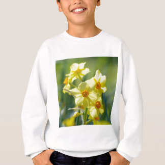 Pretty Daffodils, Narcissus 03.1 Sweatshirt