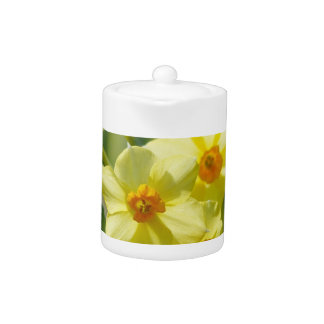 Pretty Daffodils, Narcissus 03.2_rd