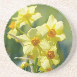 Pretty Daffodils, Narcissus 03.2_rd Coaster