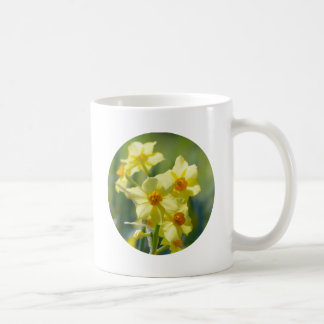 Pretty Daffodils, Narcissus 03.2_rd Coffee Mug