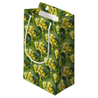 Pretty Daffodils, Narcissus 03.2 Small Gift Bag