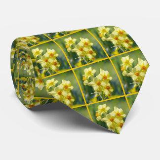 Pretty Daffodils, Narcissus 03.6.2 Tie