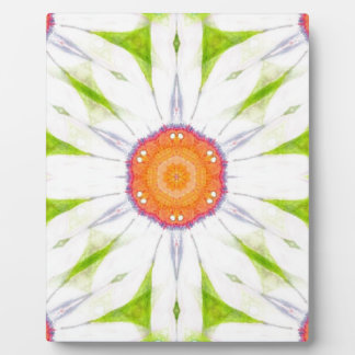 Pretty daisy design plaque