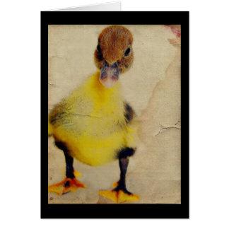 Pretty Duckling Card