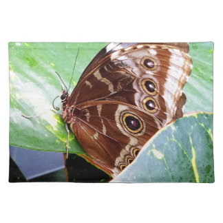 pretty eye butterfly moth brown tan picture bug placemat