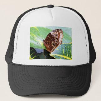pretty eye butterfly moth brown tan picture bug trucker hat