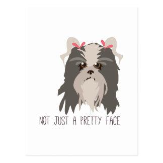 Pretty Face Postcard