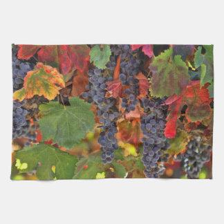 Pretty Fall Vineyard Wine Kitchen Towel