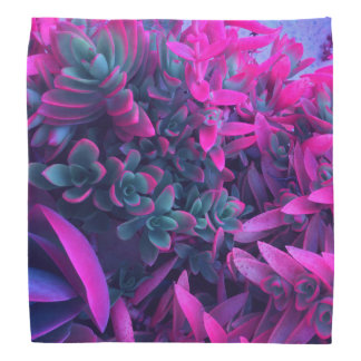 Pretty Floral Abstract Succulent Nature Photograph Head Kerchiefs