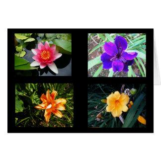 Pretty Flowers, Blank Cards