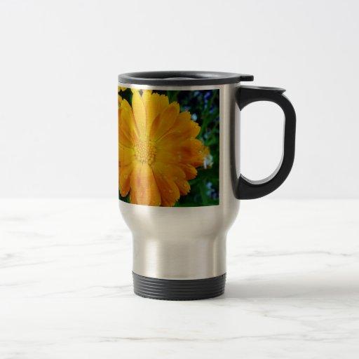 pretty, fresh yellow daisy flower mug