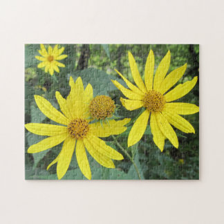 Pretty Imperfect Yellow Wildflowers Puzzles
