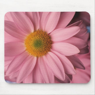 Pretty in Pink Daisy Mousepad