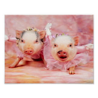 Pretty In Pink Pigs Wall Poster