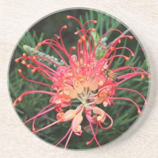 Pretty in Pink Sandstone Coaster