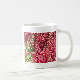 Pretty Kangaroo Paws Basic White Mug