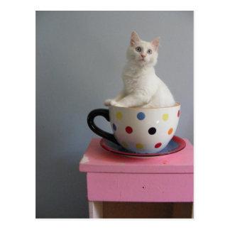 pretty kitten in plant pot postcard