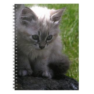 Pretty Kitten Notebooks