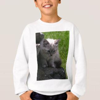 Pretty Kitten Sweatshirt