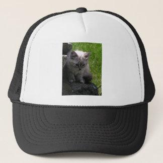Pretty Kitten Trucker Hat